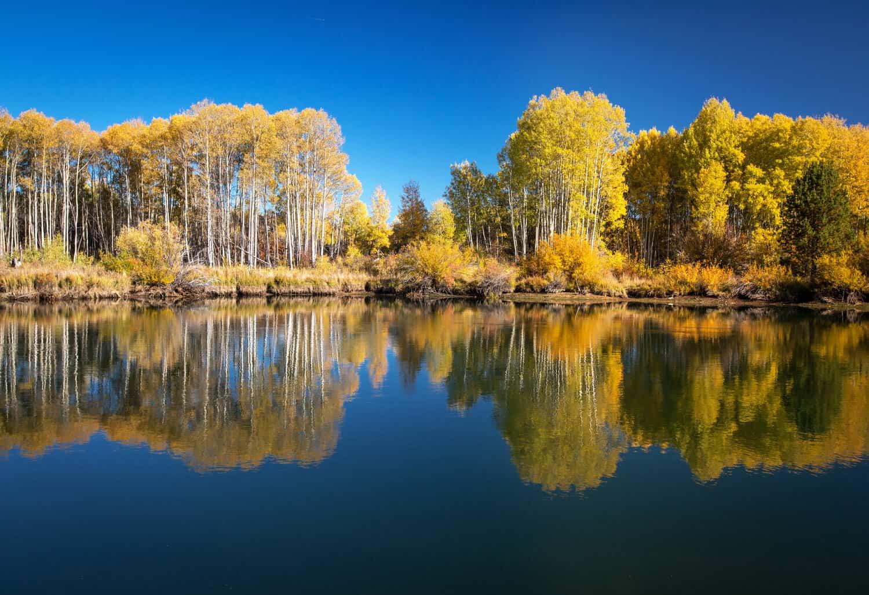 Deschutes River Photo Tour